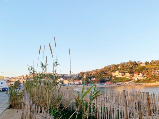 Noord- Tunesië beach baai