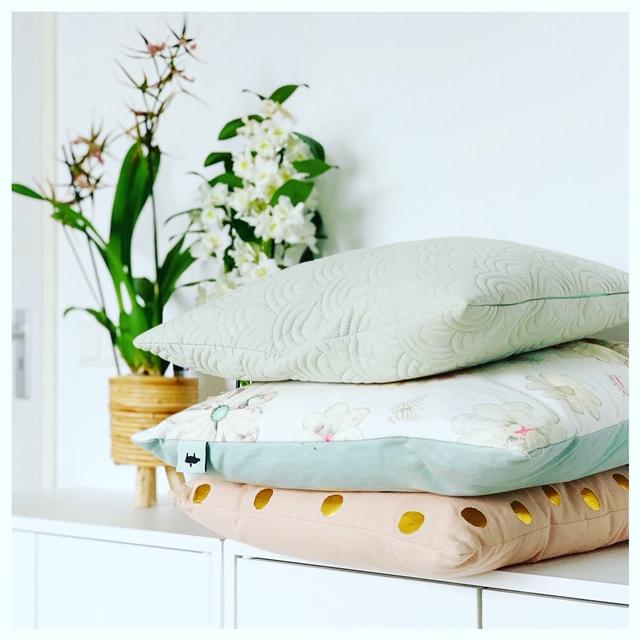 Met een orchidee in huis zorg je voor kleur!