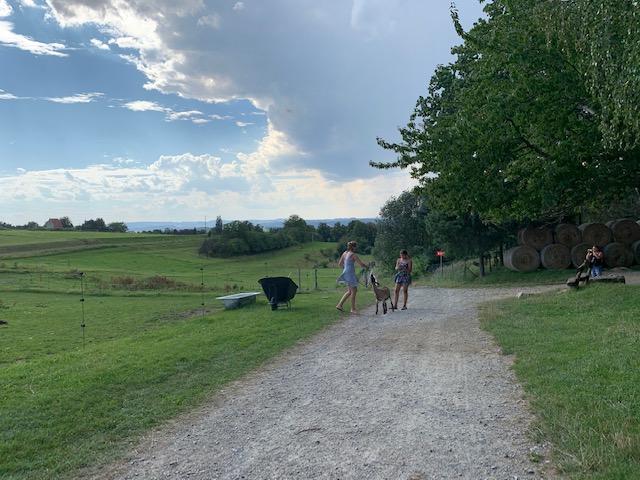 geitje wandelen western