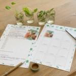 Free printable over stekjes planten
