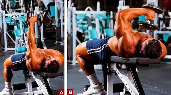 Tríceps testa unilateral usando halteres