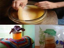 """Κομπούχα - """"Το τσάι της αθανασίας"""" (συνταγή)"""