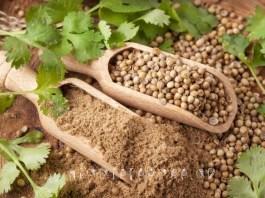 Κολίανδρος: 9 απίστευτα Οφέλη για την υγεία. (No. 1 Αποβάλει τοξικά Βαρέα Μέταλλα)