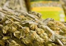 Τσάι του βουνού: Επιβεβαιωμένη αντιοξειδωτική, αντιφλεγμονώδη, αντιμικροβιακή και αναλγητική δράση