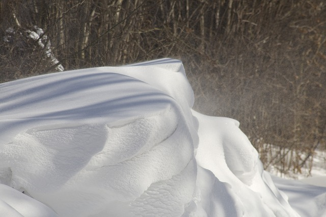 snowdrift with woods behind
