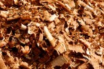 macro shot of wood shavings