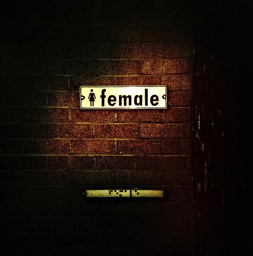 female bathroom sign brick wall