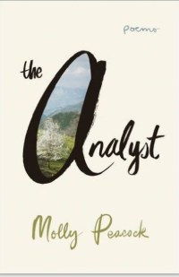 cover of the analyst with painting nature scene inside the a