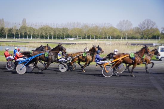 14_04 - hippodrome_Chatillon_sur_chalaronne_14_04_2019_DSC3364.jpg