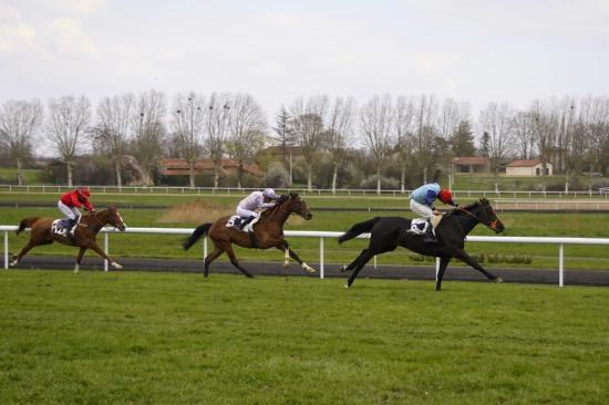 Hippodrome Chatillon sur Chalaronne - course 25/03/2019 - Photo 11