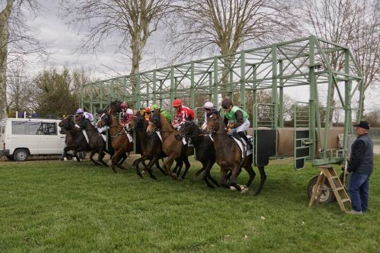 Hippodrome Chatillon sur Chalaronne - course 25/03/2019 - Photo 26