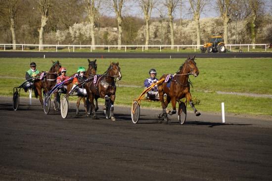 Hippodrome Chatillon sur Chalaronne - course 25/03/2019 - Photo 33
