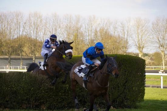 Hippodrome Chatillon sur Chalaronne - course 25/03/2019 - Photo 51