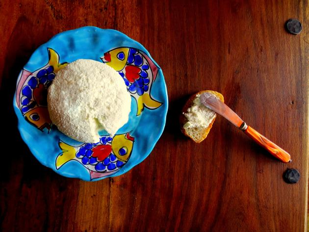 Pressure Cooker Ricotta Cheese