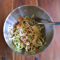 Mix-in the cabbage, carrot and onion.