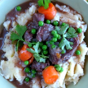 Instant Pot Pressure Cooker Spiced Beef Stew Recipe