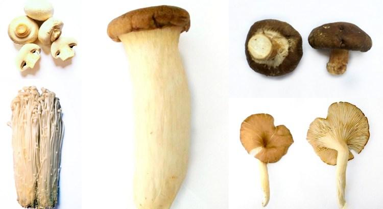 Mushroom Pressure Cooker / Instant Pot Nutrition