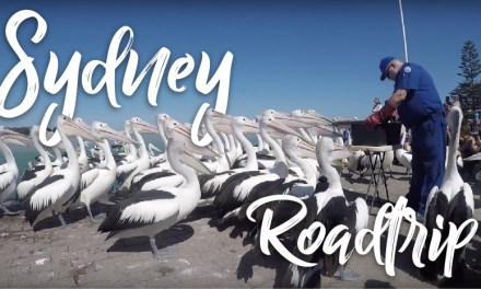 AUSTRALIA ROAD TRIP VLOG