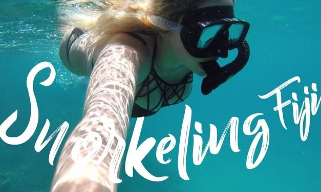 FIJI SNORKELING | FIJI