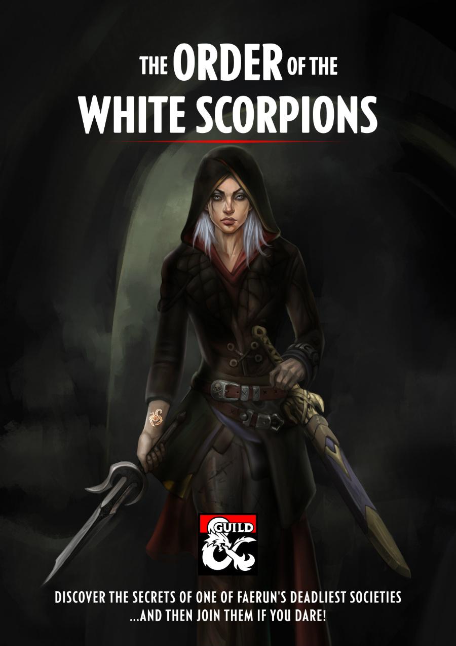 Assassin Fantasy Art Female