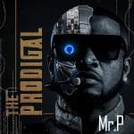 Mr P – Smooth Criminal
