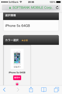 iPhone5s silver