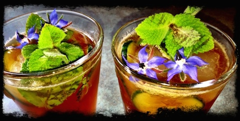 Pimm's with Borage