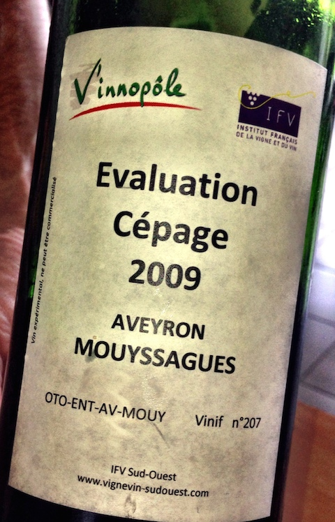Mouyssagues wine at l'institut de la Vigne