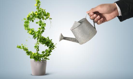 start up loans for felons