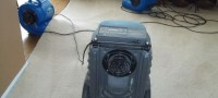 How to dry out wet carpet   HireRush Blog