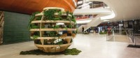 Sustainable living: IKEA launched Growroom