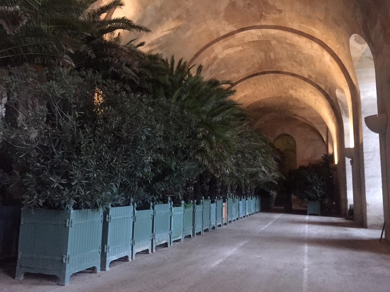 ベルサイユ宮殿のオランジュリー