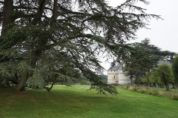 ショーモン=シュル=ロワール:ロワールの城の庭園
