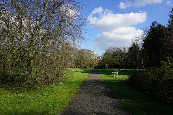 ケンブリッジ大学植物園、散策の続きです
