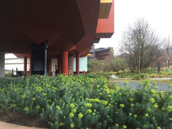春先のパリの庭、ケ・ブランリー美術館