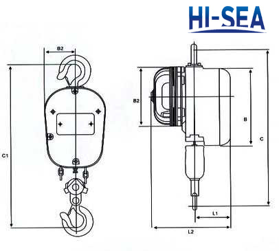 DHS Series Electric Chain Hoist Supplier, China Electric