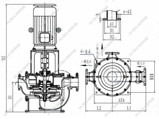 CLV Marine Vertical Centrifugal Pump Supplier, China