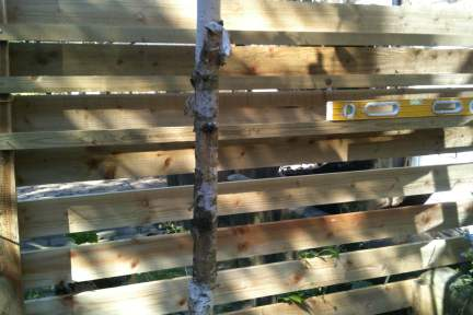 Our new wooden garden fence unfinished