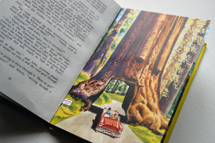 "page from the vintage 1959 Ladybird book, ""Flight three, U.S.A. - A Ladybird Book of Travel Adventure"" showing a car driving through the middle of a giant American redwood tree"