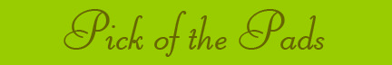 """""""Pick of the Pads"""" blog post banner"""
