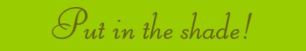 Put in the shade blog banner