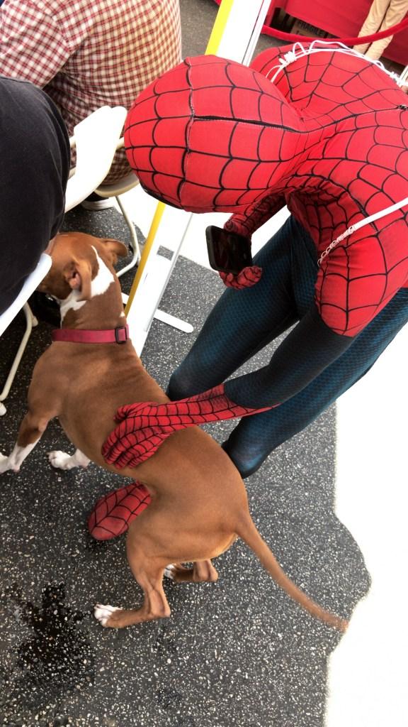 Spiderman and Hazel