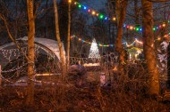 The Copse at Christmas