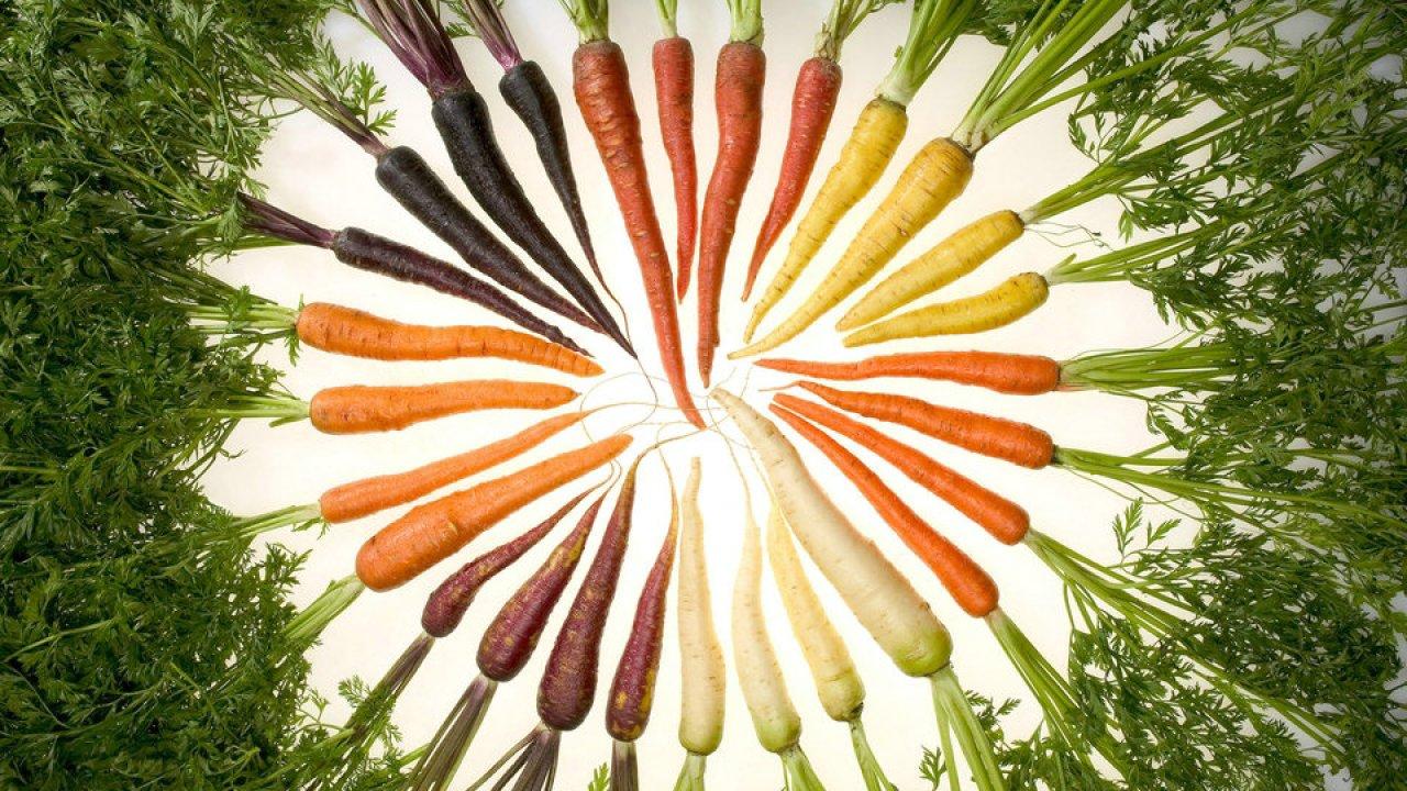 Nehmen Sie ab, indem Sie nur sautiertes Gemüse essen