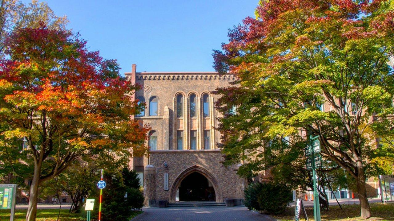 文学部 北海道 大学
