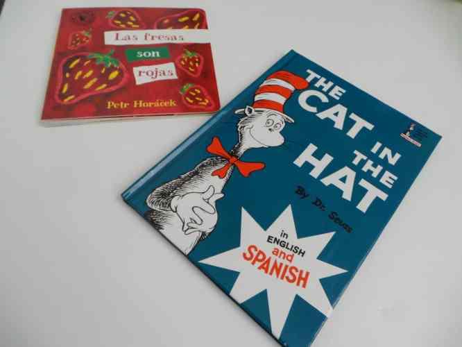 Bilingual books teaching a second language