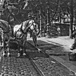 arrosage des chevaux - chaleur à Paris en 1911 - Agence Rol
