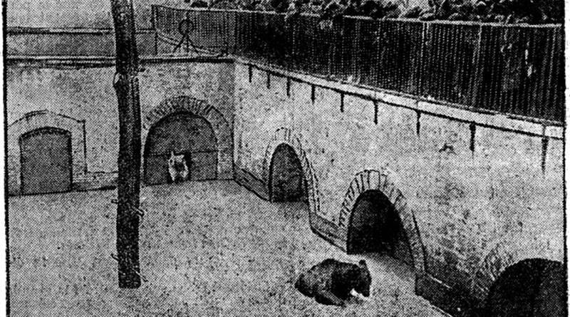 fossé aux ours du Jardin des plantes inondé par la crue de 1910 - Petit Journal du 23 janvier 1910