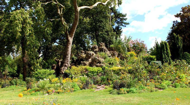 fleurs et plantes du Parc Monceau