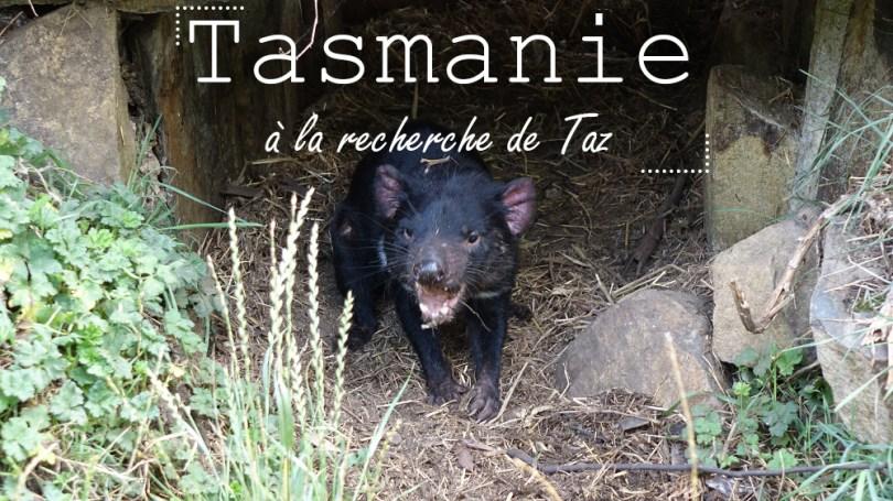 road trip Tasmanie diable australie